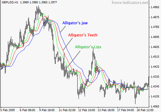 Indikator forex alligator strategy