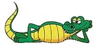 Gator forex